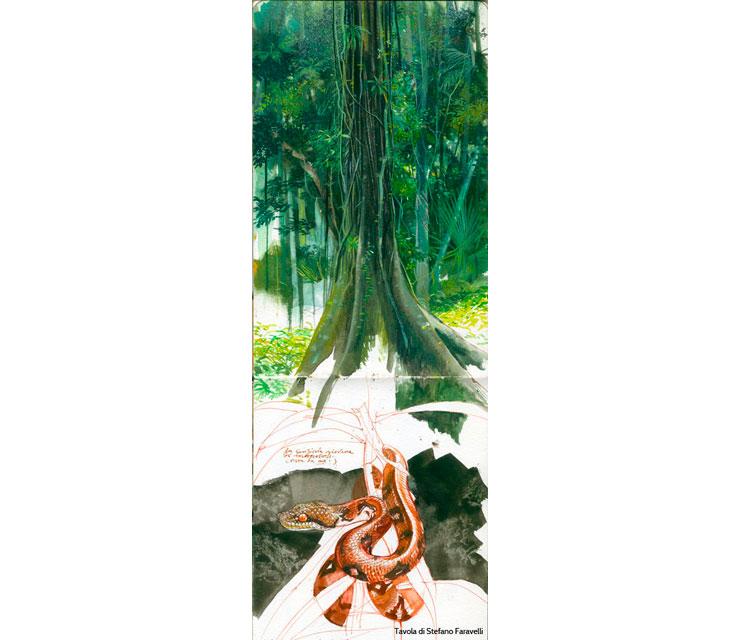 Verde stupore (Foresta del Madagascar)